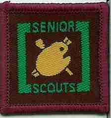 The Senior Scout Artist Badge